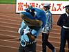 Mascot03