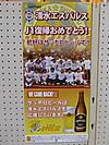 Sapporo_2