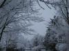 Snow1_20200416053901