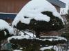 Snow_20200411090001
